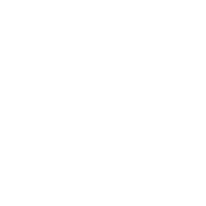 Notary-Public-Member-NC-Light-M